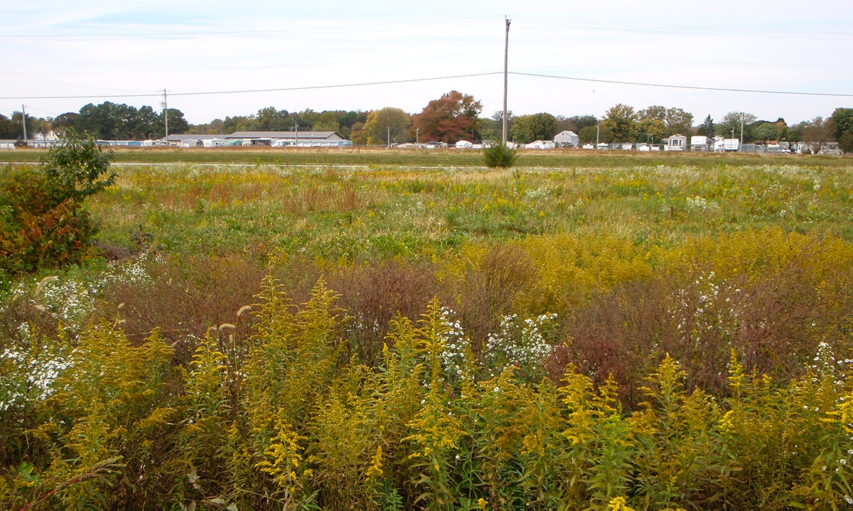 Phase I Environmental Site Assessment on Vacant Land