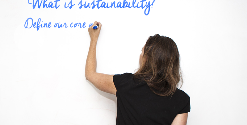What is sustainability training?